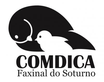 COMDICA publicou edital para as eleições do Conselho Tutelar