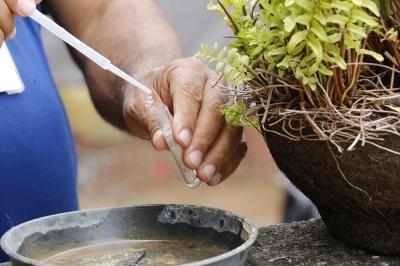 Comunidade Verde Teto receberá mutirão de limpeza neste sábado (17)