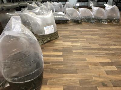 Emater entrega mais de 3,5 mil alevinos