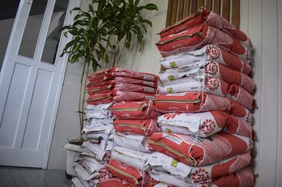 Agricultura inicia distribuição de sementes de milho