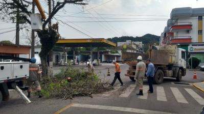 Secretaria de Obras e Nova Palma Energia realizam podas na cidade