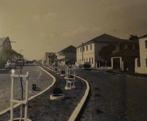 Avenida Vicente Pigatto