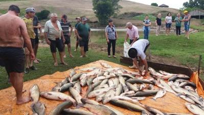 Feira do peixe vivo aconteceu no Colonial